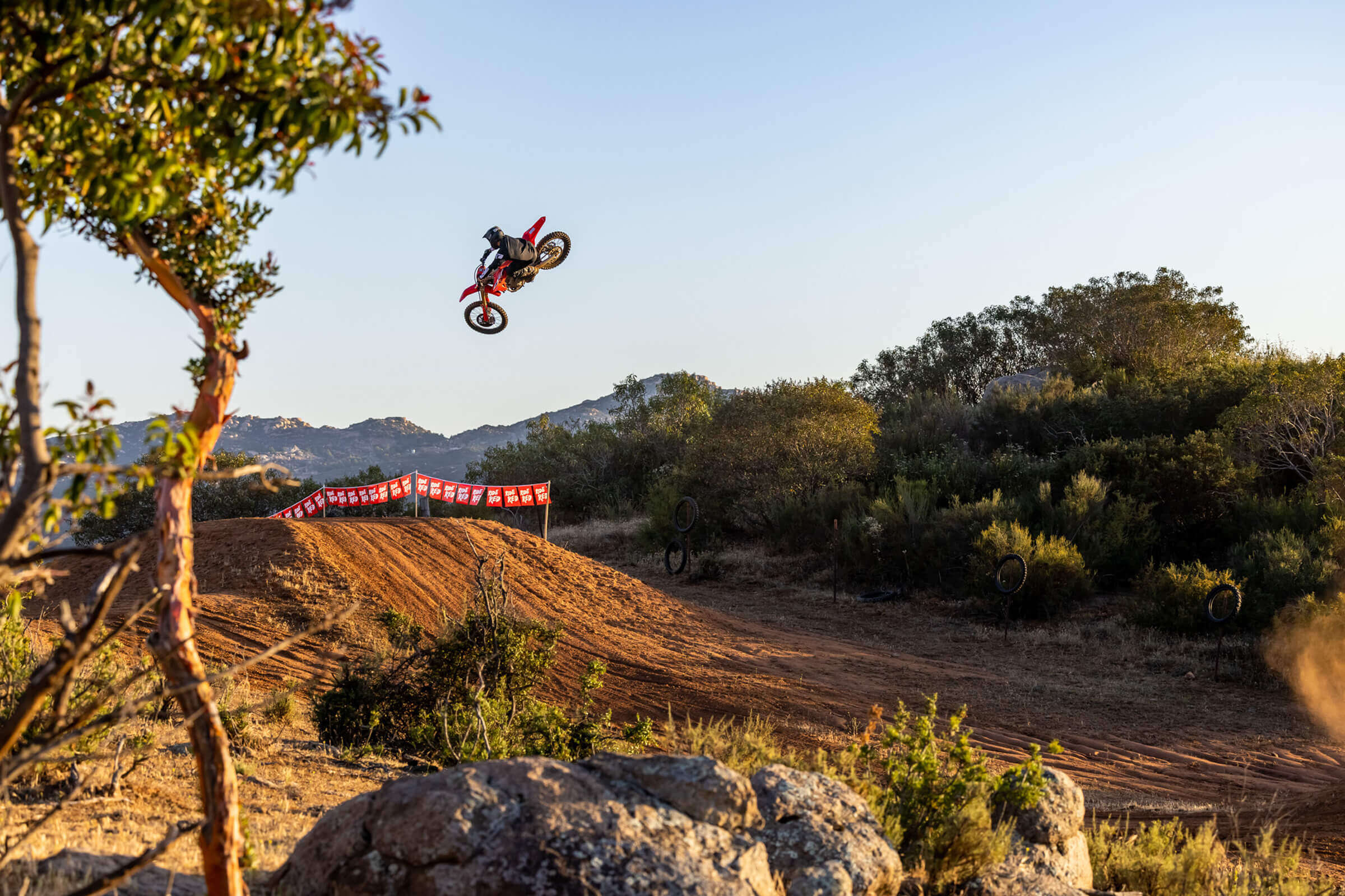 Read more about the article Die neue CRF250R